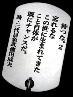 03-13.jpg